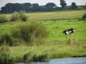 60 jarig bestaan E H.B.O. Kerkwijk Nederhemert 042